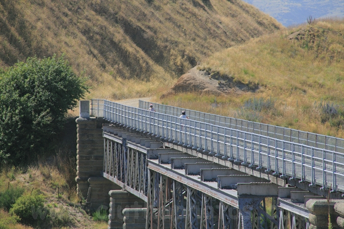 Otago Central Rail Trail,Poolburn Viaduct,Auripo,Central Otago