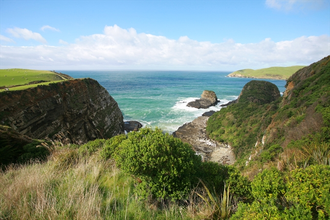 Penguin Bay,The Catlins,South Otago,Clutha District