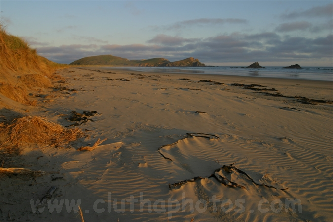 Surat Bay,False Islet,The Catlins,South Otago,Clutha District