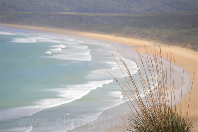 Tautuku Bay,South Otago,The Catlins,Clutha District